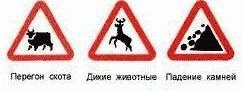 предупреждающие знаки дорожного движения фото