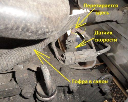 Коврики в багажник Nissan (Ниссан) Товары и услуги
