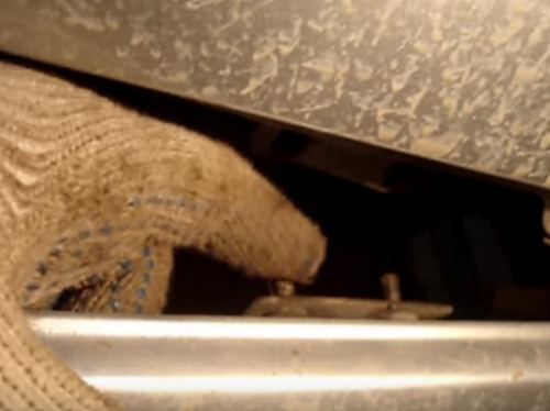 Вышивка шелковыми ленточками кокс энн 69